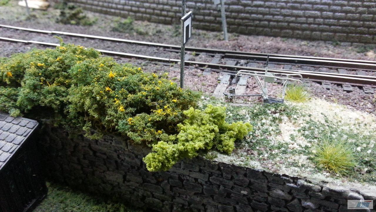 Buissons touffus et taillis le train de jules for Buisson synthetique