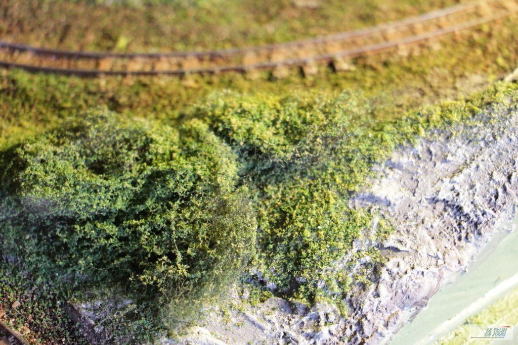 Buisson sur le réseau Montjustin gare